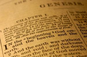 bible_6msj